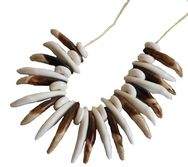 palaeo wolf teeth necklace sm